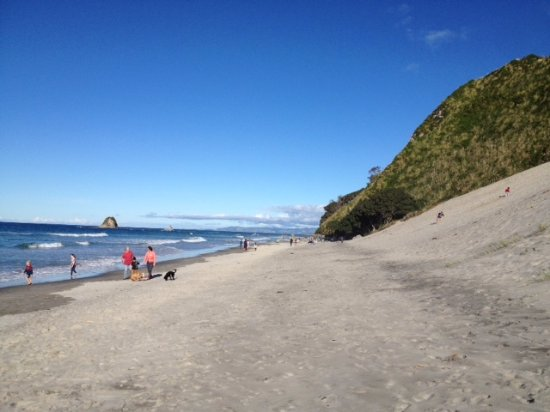 Things To Do In Mangawhai - Sand Dunes